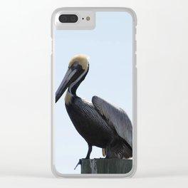 Pelican Face. Clear iPhone Case