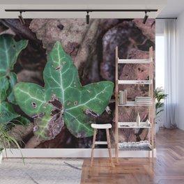Ivy leaf Wall Mural