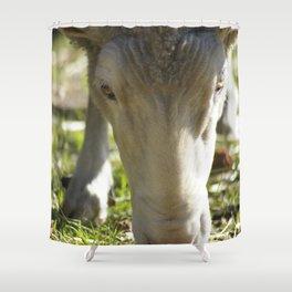 Mary @ Happy Hooves Farm Sanctuary Shower Curtain