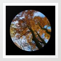 Tree from below Art Print