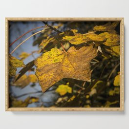 Autumn Leaves Serving Tray