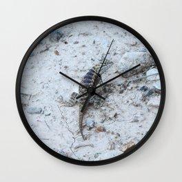 Desert Spiny Lizzard Wall Clock
