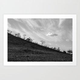 Pilanesberg 04 Art Print
