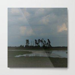 Assateague Island Swamp Metal Print
