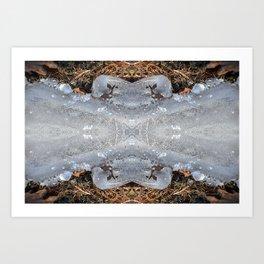 Ice Jewels and Pine Needles - Debra Cortese photo art Art Print