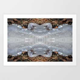 Ice Jewels and Pine Needles - Debra Cortese photo art Art Print