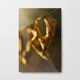Autumn #7 Metal Print
