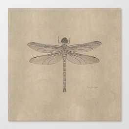 Dragonfly Fossil Dos Canvas Print