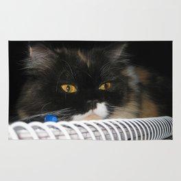 Cat Wanna Study Rug