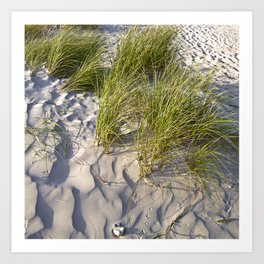 Sand Dune of Denmark Art Print