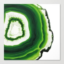 Green Agate Geode slice Canvas Print
