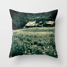 Frozen day n.3 Throw Pillow