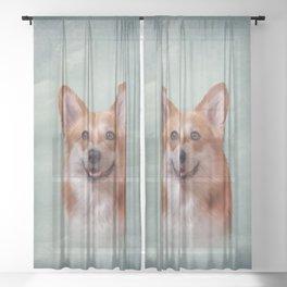 Drawing Dog breed Welsh Corgi portrait Sheer Curtain