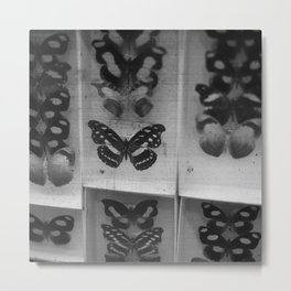 Butterfly Case - black and white Metal Print