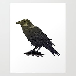 Crow Contemplation Art Print