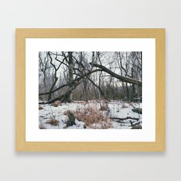Branch Ephemera Framed Art Print