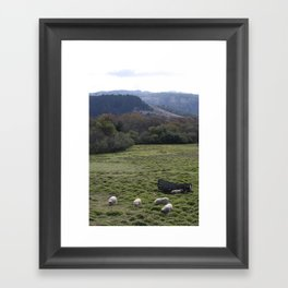Sheepscape Framed Art Print