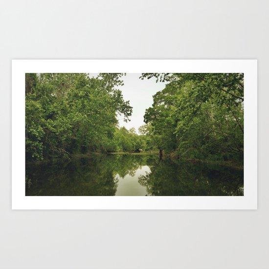 GREENBELT WATER Art Print