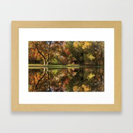 Sycamore Reflections Framed Art Print