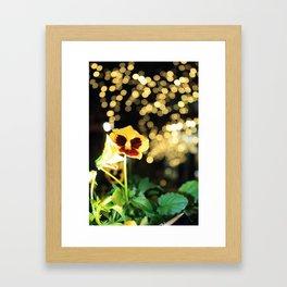 Flower of the Night Framed Art Print
