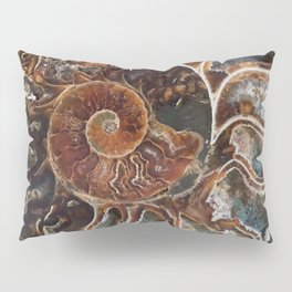 Fossilized Shell Pillow Sham