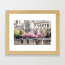 Cherry blossoms in Paris, Notre Dame Viwe Framed Art Print