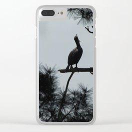 Sleepy Cormorant Clear iPhone Case