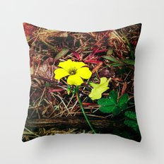 Only when there is sun Throw Pillow