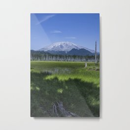 Oblivious Point of View Metal Print