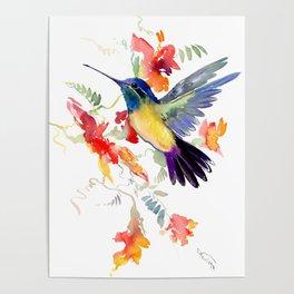 Hummingbird, floral bird art, soft colors Poster