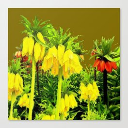 YELLOW CROWN IMPERIAL WATERCOLOR  FLOWERS Canvas Print