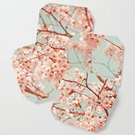 blossoms all over Coaster
