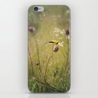 elmo iPhone & iPod Skins featuring Life in the Meadow by Kimberley Britt