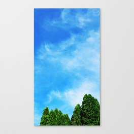 High Times Canvas Print