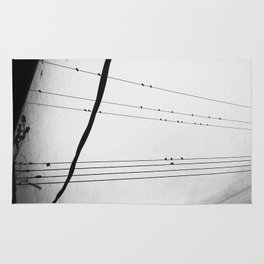 Birds on a Wire Rug