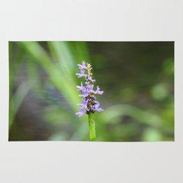 Purple Flower with Blur Rug
