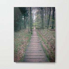 Path to..... Metal Print