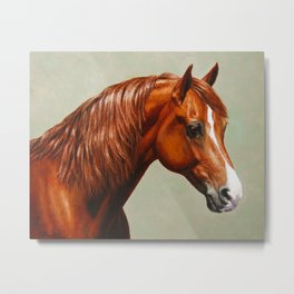 Chestnut Morgan Horse Metal Print
