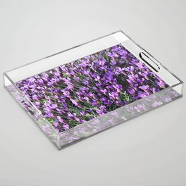 SPANISH LAVENDER AND ONE BEE Acrylic Tray