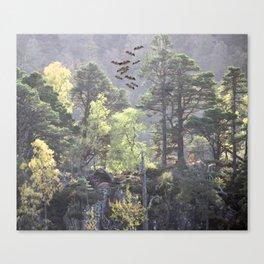 A Dream Pang Canvas Print
