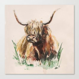 Bos taurus taurus watercolor Canvas Print