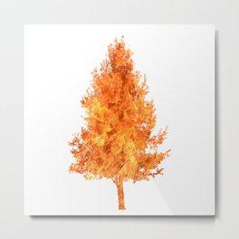 pear tree fire Metal Print