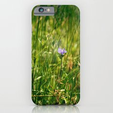 Tiny Daydreams Slim Case iPhone 6s
