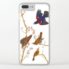 Red winged Starling, or Marsh Blackbird Clear iPhone Case
