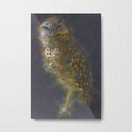 Burrowing Owls Bird Metal Print