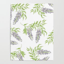 Purple Wisteria Floral Branch  Poster