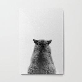 grey black bear back view  Metal Print