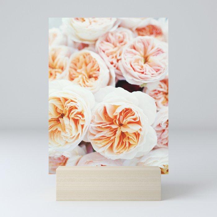 Garden Roses Mini Art Print