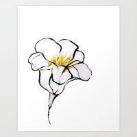 Blanco Art Print