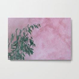 Pink Eucalypt Metal Print